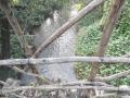 padernello-ponte-dello-scultore-mori-16