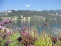 erbe-danzanti-scorcio-del-lago-con-Sarnico-9