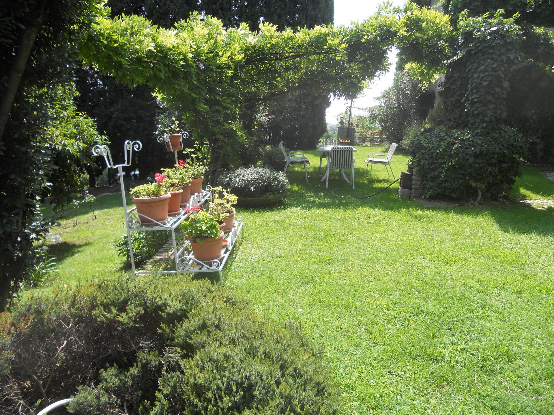 <p>particolari del giardino</p>
