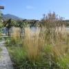 Giardino delle erbe danzanti Paratico lago d'Iseo