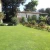 palazzo Secco d'Aragona - particolari del giardino