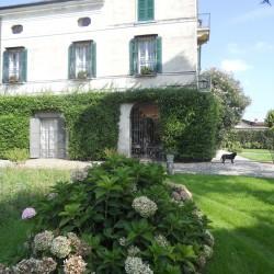 villa Guarneri - particolari del percorso del viale dei bossi
